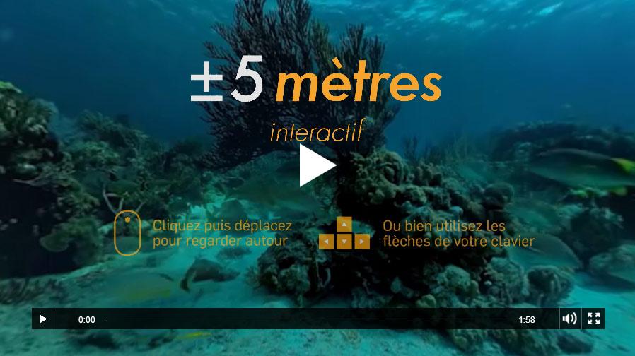 +/- 5 mètres Interactif, une expérience de plongée à 360°.